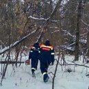 Пропавший в Тольятти 15-летний подросток найден мертвым
