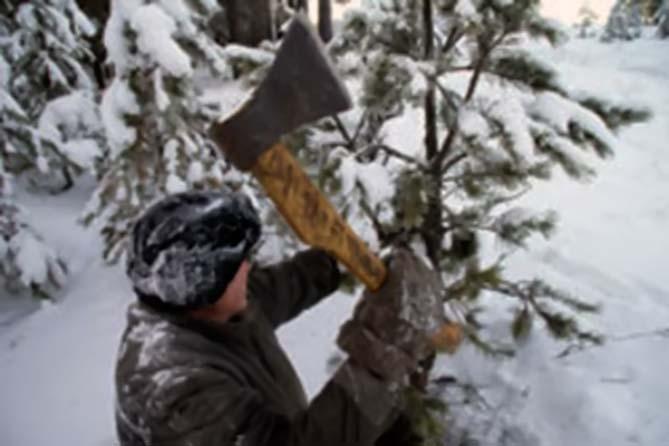 С 1 декабря 2018 года усилено патрулирование лесного фонда Самарской области