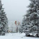 Погода в Тольятти с 18 по 21 декабря 2018 года: Ночью по области до -25 градусов