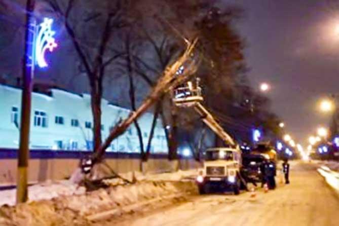 Падение дерева в Центральном районе Тольятти 16 января 2019 года