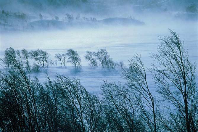 В Тольятти 12 января 2019 года ожидается сильный ветер, метель и гололед