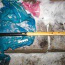 Подозревая 37-летняя женщина: Предполагаемое орудие преступления – топор