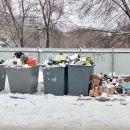 Схема обращения с твердыми коммунальными отходами 2019 действует в Тольятти с замечаниями