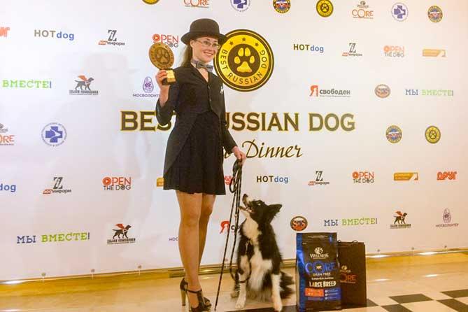 Собака-терапевт из Тольятти признана лучшей в России