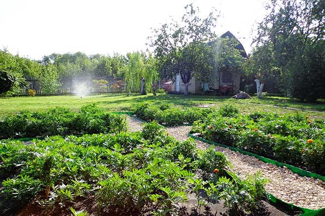 Новый федеральный закон о садоводстве и огородничестве с 1 января 2019 года: Как отличить сад от огорода