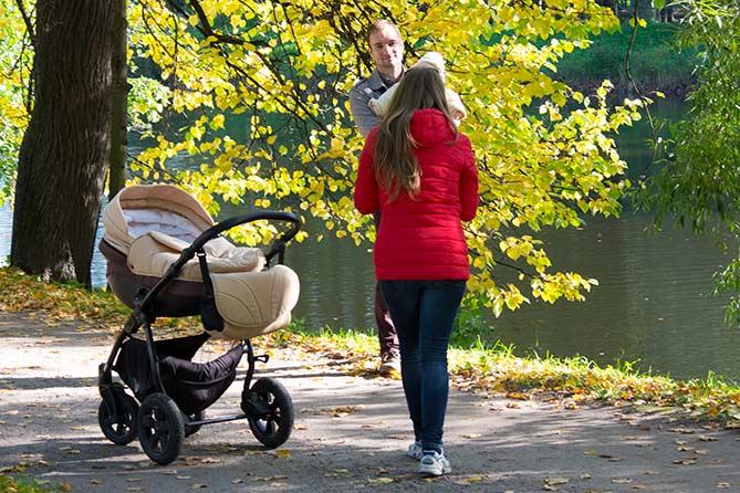 Ежемесячная выплата при рождении первого и второго ребенка: Законопроект