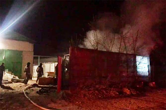 Погибли запертые в клетках животные во время пожара в Тольятти 27 апреля 2019 года