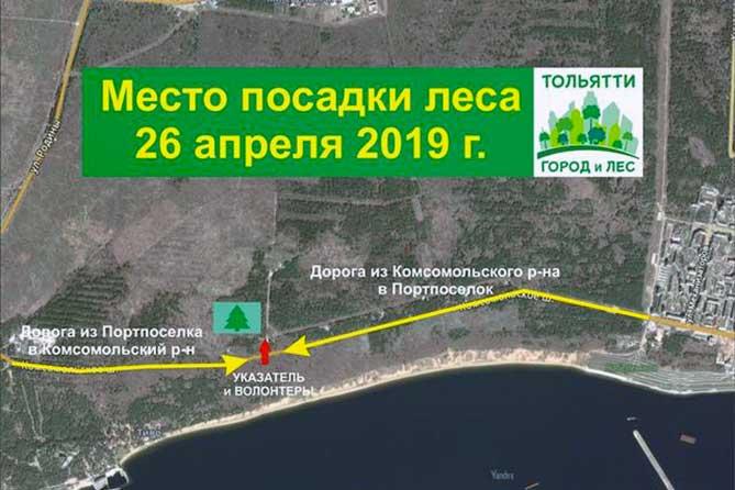 Жители Тольятти будут сажать дубовые саженцы 26 и 27 апреля 2019 года