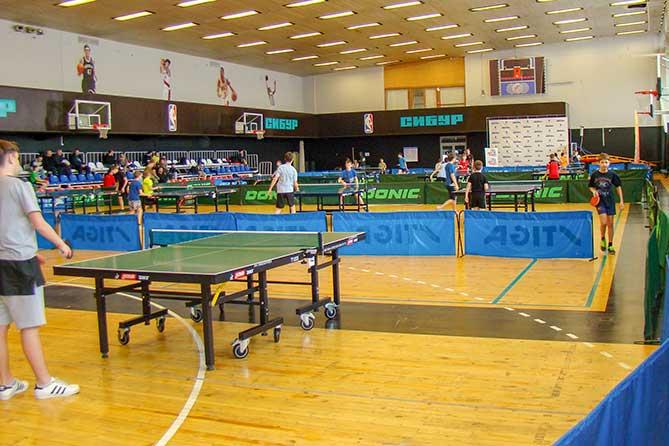 Тольяттинцев приглашают принять участие в соревнованиях по настольному теннису с 10 по 12 мая 2019 года