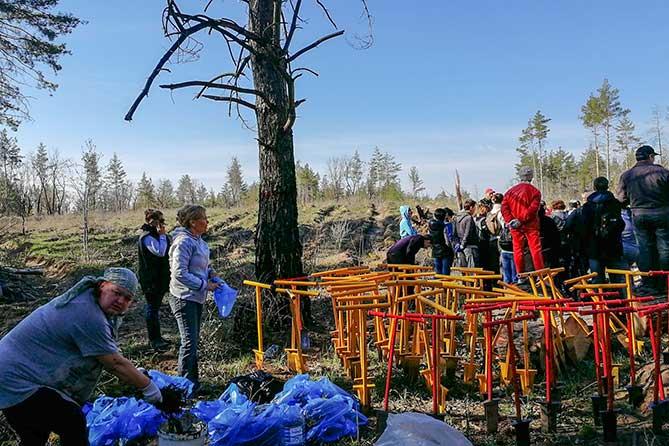 В Тольятти состоялась очередная акция по высадке молодых деревьев 26 апреля 2019 года
