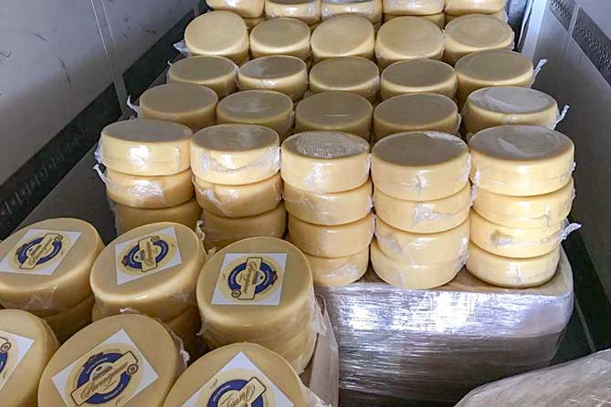Сыр без маркировки спрятали под казахским «Пармезаном»