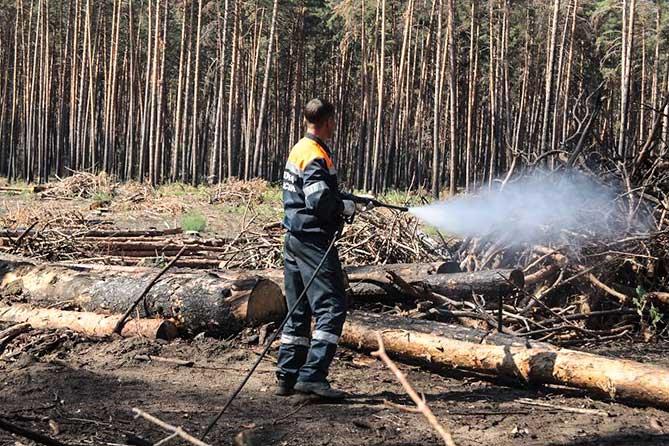 На территории Тольятти 12 мая 2019 года зафиксировано сразу три участка возгорания леса