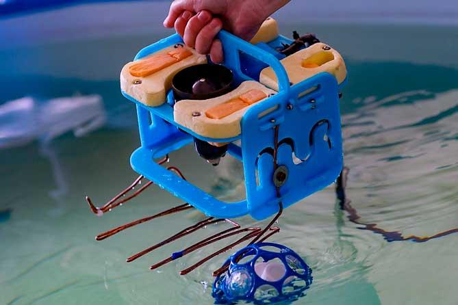 Две юные тольяттинки создали подводного робота и получили спецприз на всероссийском конкурсе