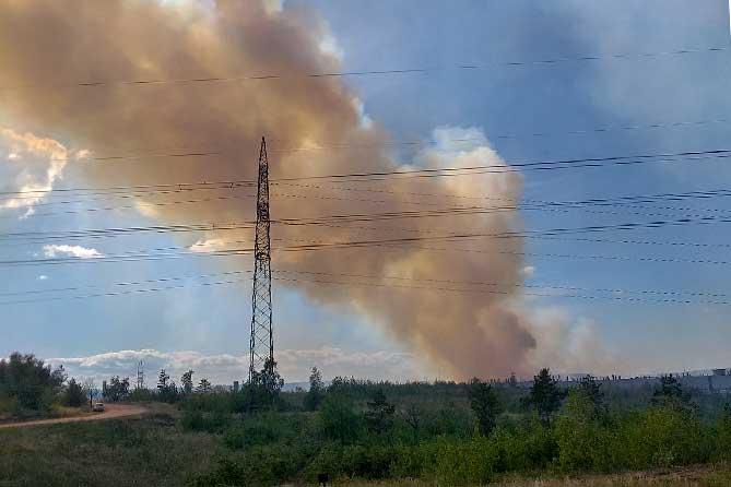 Возгорание леса 26 июня 2019 года в Тольятти локализовано
