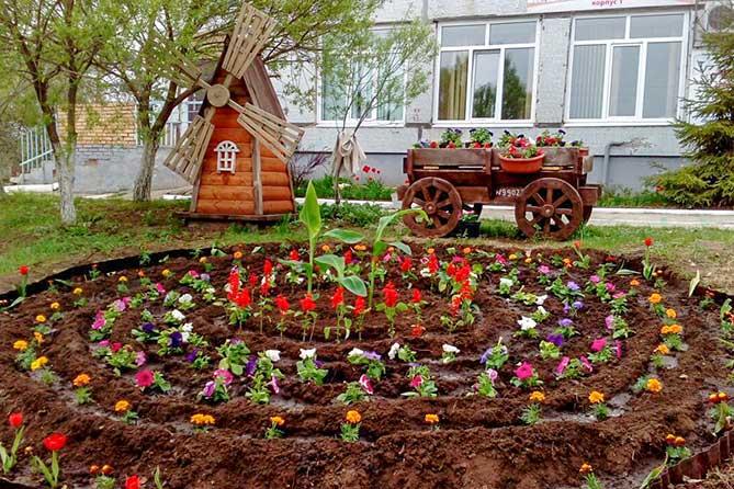В Тольятти проходит смотр-конкурс «Чудо-клумба» 2019 среди школ и детских садов