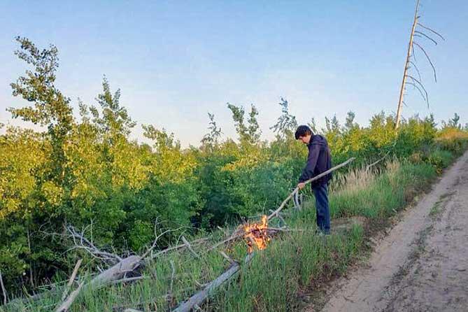 Подозреваемого в поджоге леса в Тольятти будут судить за нанесение побоев пенсионеру