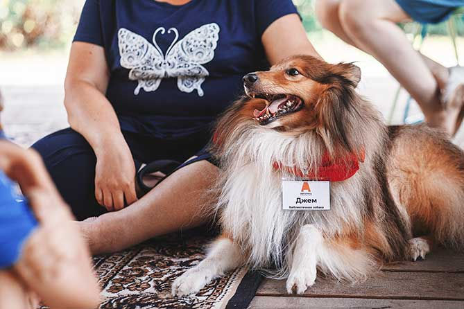 Удивлять и вдохновлять: Интересные мероприятия в Тольятти 17 июля 2019 года