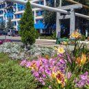 К уборке «белых пятен» в Тольятти хотят привлекать добровольцев