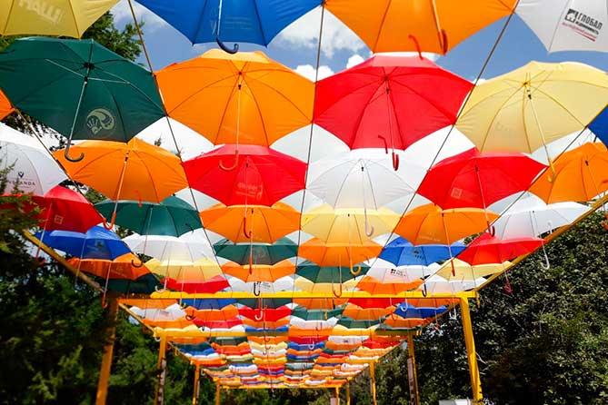 В Тольятти появилась аллея парящих зонтиков «Счастливый Тольятти»