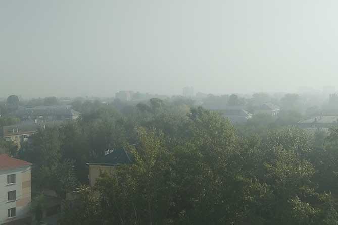 Дезинформация или выбросы в Тольятти
