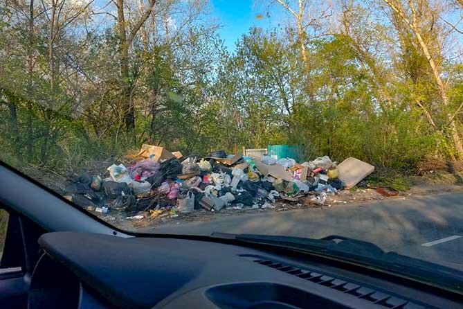 Администрация Тольятти просит жителей сообщать о фактах сброса мусора из автотранспорта в неустановленных местах