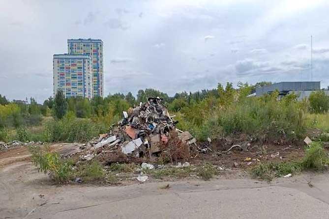 В 2019 году на территории Тольятти обнаружено 46 несанкционированных свалок