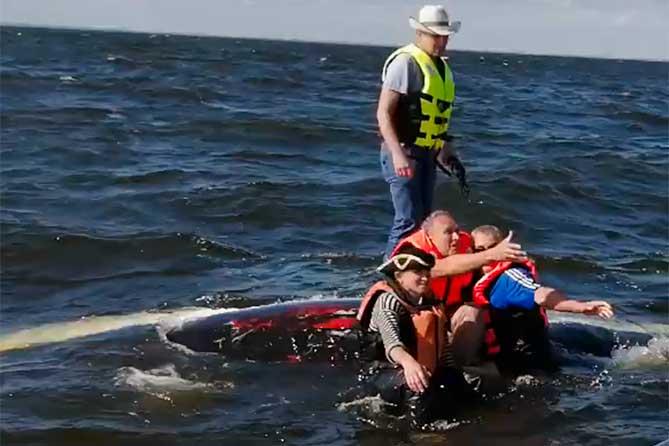 На Волге перевернулась яхта: Спасатели Тольятти прибыли на место происшествия