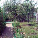 В Жигулевске 33-летняя женщина закопала на даче: Ей грозит до 20 лет лишения свободы