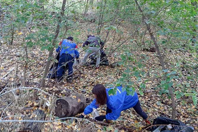 Тольяттинцы 21 сентября 2019 года провели субботники по уборке мусора на Федоровских лугах и в Ягодинском лесу