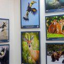 В Тольятти работает уникальная выставка «100 чудес света» до 29 сентября 2019 года
