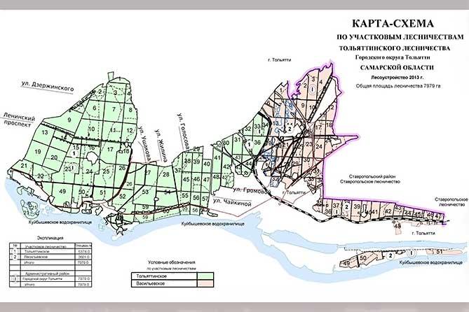 лесные кварталы тольятти