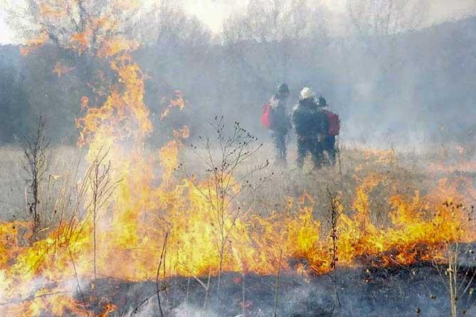 Именно они и стали сильнейшим очагом пожара в Тольятти