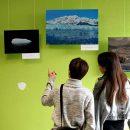 Выставка «Магия холода» выпускницы Тольяттинского государственного университета