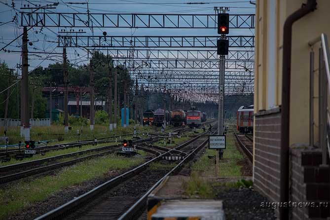 В Тольятти водитель ночью не заметил поезд: У мужчины травма головы