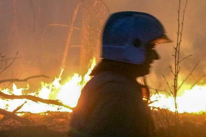 горит лес 24 квартал тольятти