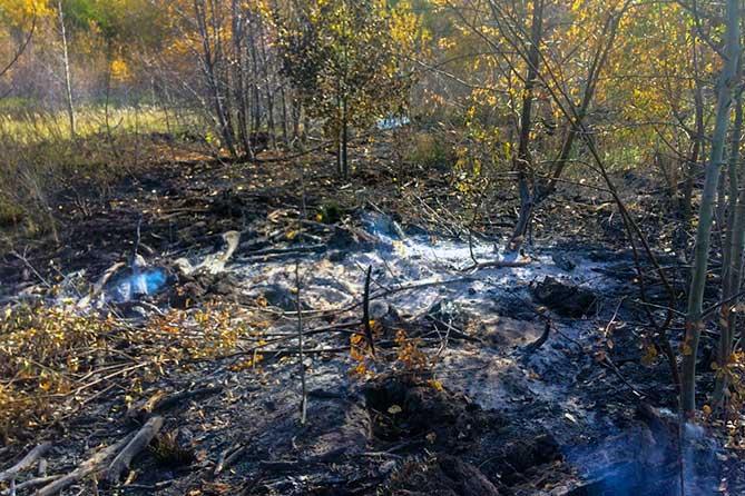 горит поляна после огня тольятти