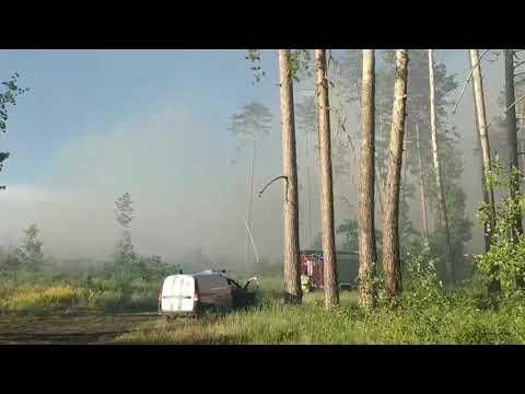 В Тольятти снова горит лес