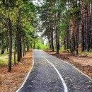 В Тольятти завершено благоустройство 13 дворовых территорий и 4 общественных пространств